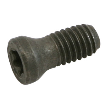Screw, Insert Retaining, IS 3007